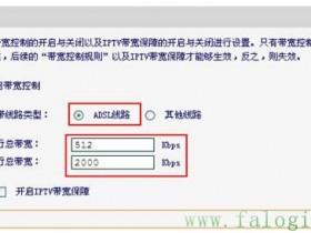 FWD105V1_FWD102 V1 IP带宽控制应用举例