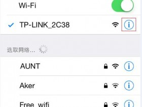falogin.cn官网IPhone/iPad如何手动指定IP地址?